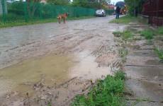 Ulica Braci Szumelewiczów po deszczu