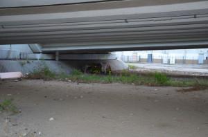 bezdomny2