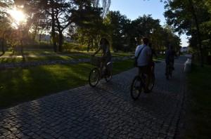 Mieszkańcy Stalowej Woli wolą mieć swój jednoślad, arower miejski traktują sporadycznie